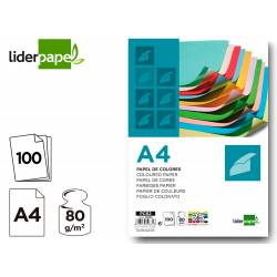 Papel color Liderpapel tamaño A4 80 g/m2 pack 100 hojas 25 Colores Surtidos