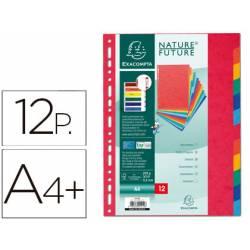 Separadores cartulina Exacompta Din A4+ juego de 12 colores