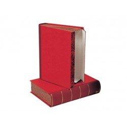 Caja transferencia Liderpapel carton color rojo